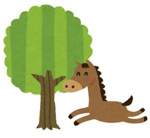 今年は甲午なので、馬と関わるタロットカード占い師