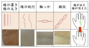 京都の手相占いで見る線の状態