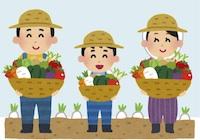 京都の占い鑑定師HAMAが解説する土から採れる野菜