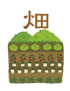 京都の占い鑑定師HAMAが解説する畑の土