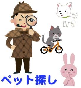 京都で人気のペット探しの占いで居場所が当たる