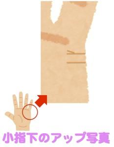 京都駅近くで最も当たると人気の占い師に小指の下を見せる