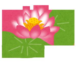 蓮が咲いた池がある祇園に行ってタロット占いをしてもらう