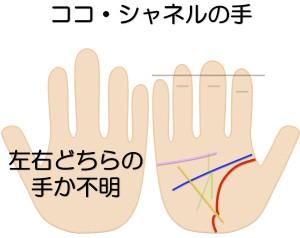 シャネルの手を手相鑑定で見る