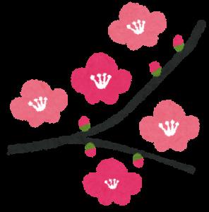 滋賀から京都に梅を見に来たついでに占いをする