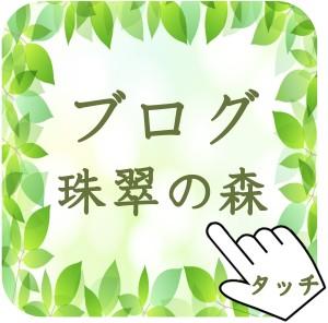 京都烏丸四条の占い師ブログへのタッチ